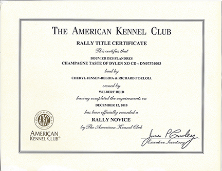 Rally Title Certificate