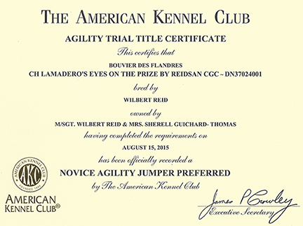 Agility Trial Title Certificate