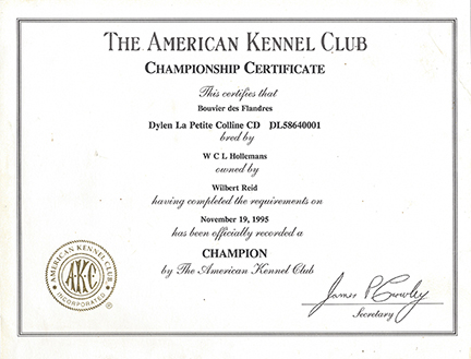 Championship Certificate