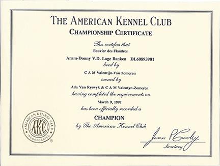 Championship Certificate