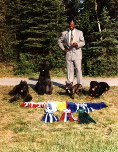 Alaska Dog Show